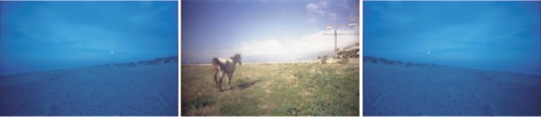 caballourbano
